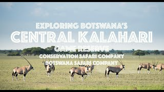 Explore the Central Kalahari Game Reserve through our video!