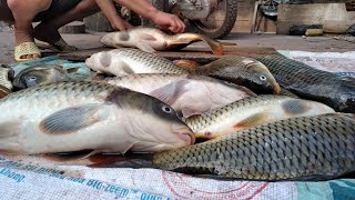 Đắp Cá Bắt Cá Suối ✓ Poòng Văn Quỳnh