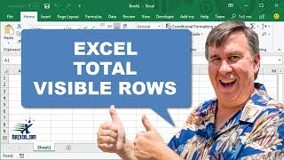 Learn Excel - Total Visible Rows - Podcast 1976