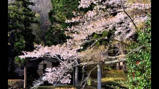 Mozartconcerto21/鳴滝の春♪ポール・モーリア/みじかくも美しく燃え