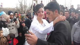 Rojava müzik Ayhan&Aynur düğün
