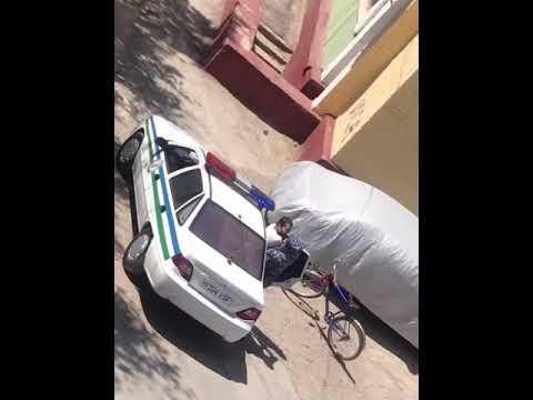 Сотрудник ОВД пытается насильно усадить велосипедиста в патрульную машину