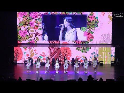 러블리즈(Lovelyz), `꽃점(Floral)`등 4곡 Fancam 무대.