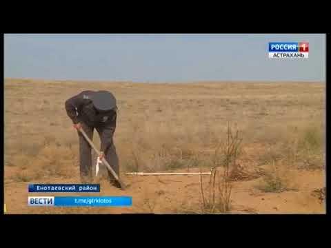 О деградации земель в Астраханской области