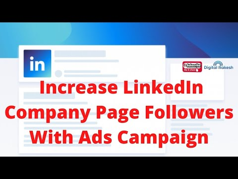 LinkedIn Company Page Followers with ads campaign