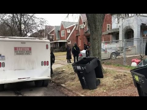 Large dogs escape yard, attack man walking on Detroit's west side