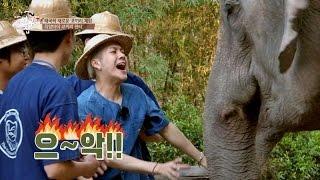 '코끼리와 친해지길 바라' 뱀뱀&잭슨 '으아아악!' 내 친구의 집은 어디인가 57회