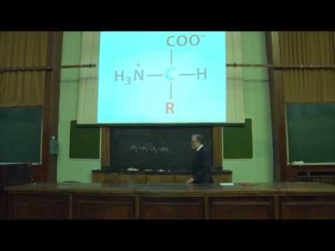 Асеев В. В. - Основы биохимии - Белки и аминокислоты