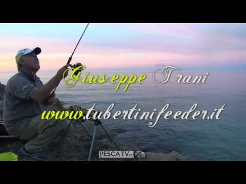 In totale per pescare in pmr