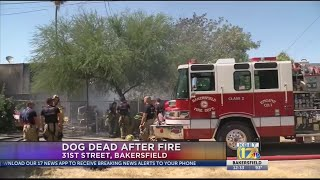 Dog dead after fire on 31st street broke out Monday afternoon