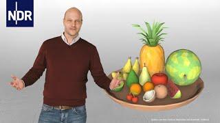 Ernährung: Wie ernähre ich mich klimafreundlich? | NDR Doku | #wetterextrem
