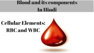 Cellular Elements: RBC And WBC