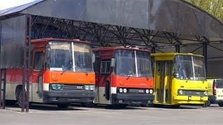 Икарус 256 по цене металлолома - забрали комплектный автобус Ikarus 256 из-под пресса