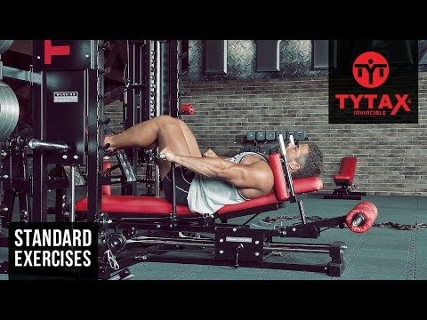 Sled Standing Chest Dip