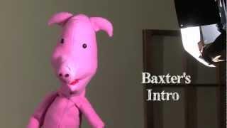 Baxter 3 TV