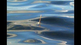 Отчет о рыбалке на плещееве озере