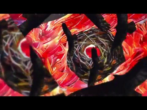 INTRONAUT - Sul Ponticello (OFFICIAL VIDEO) online metal music video by INTRONAUT