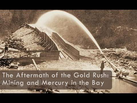 the development of maritime activities in the bay area after the gold rush The history of maritime piracy cindy vallar,  after an alarming increase in acts of  this last subject area covers boucan , clothing.
