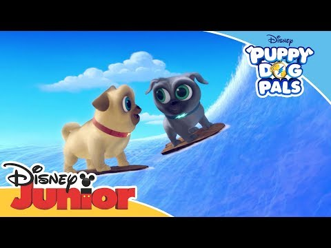 Puppy Dog Pals 🐶 | Magical Moment: Hawaii Adventure | Official Disney Channel Africa