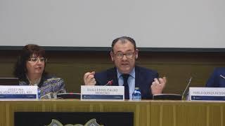 El Reglamento en la jurisprudencia del TJUE - Guillermo Palao Moreno