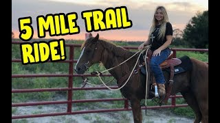 Riding My Horse On A Trail Ride! | Horse Riding