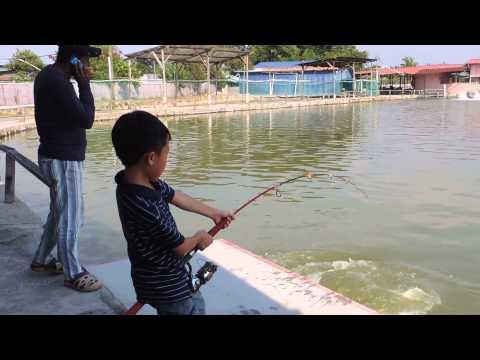 LS Fishing Pond 小钓手Small Diaoshou PAT2