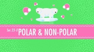 Polar&Non-Polar Molecules: Crash Course Chemistry #23