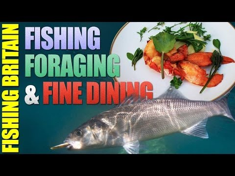 Fishing Britain – Sea Bass off the Pembrokeshire Coast