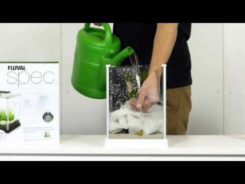 Aquascaping: Fluval Spec 3
