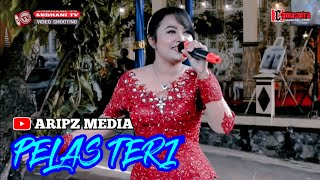 "Pelas Teri "" Camasutra// Ardhani tv HD FUL HD // Setio mudo sound system"