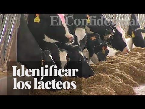 Los lácteos tendrán que indicar su país de origen en la etiqueta