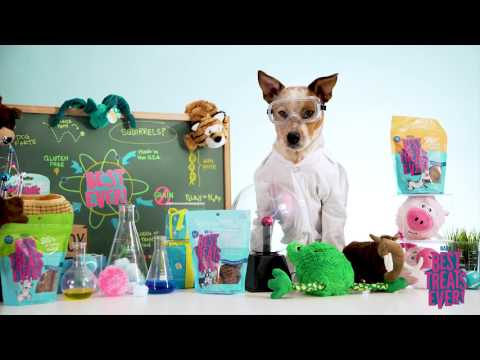 BARK: Our Newest Toys And Treats Collections