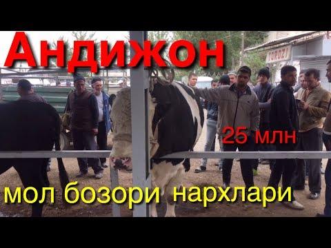 Андижон мол бозори нархлари 14-октябрь