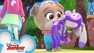 Bunny Monkey Song 🎵| Music Video | Puppy Dog Pals | Disney Junior