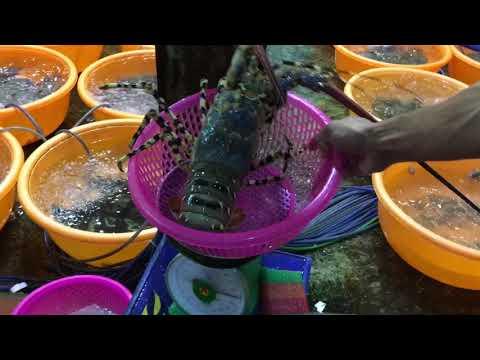 Travel Vlog - 一班人游越南峴港  用最平的價錢 食最生猛的海鮮 Vietnam Danang Part 1 Bé Mặn Seafood