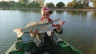 Рыбалка на реке кигач в казахстане