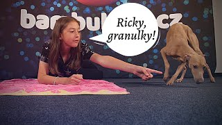 Zvířetník | Nesquik nebo Granule?! Klaudie nebo Ricky?!