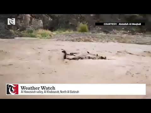Watch: Car swept away in Oman wadi