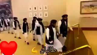Taliban Afghanistan best entry status