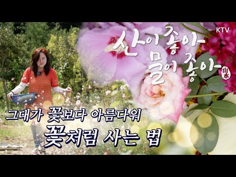 21.9.6. KTV 산이 좋아 물이 좋아 시즌2(반딧불 마을의 행복전도사 김반장)