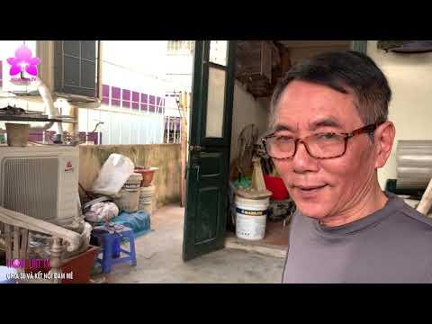 Độc Chiêu Dùng Chuối Ngâm Bia Pha Nước Tro Bếp Kích Kieki Thân Non [HOALANTV]