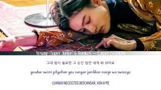 Yesung (Super Junior) & Bumkey — Carpet (STATION) [Sub Esp | Rom | Han]