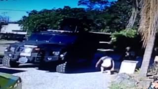 Special Forces Raid Landsborough