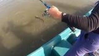 Отчеты рыбалка в дельте волги