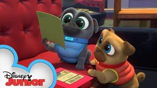 Finding Bob's Valentine ❤️ | Puppy Dog Pals | Disney Junior