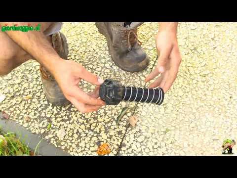 Cherepovets il trattamento di unghia coltivato dal laser