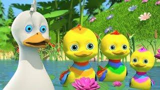Five Little Ducks   Songs for Babies   Kindergarten Nursery Rhymes