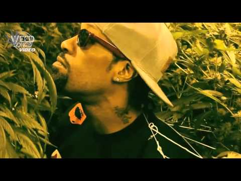 Mr. & Mrs. THC / The Marijuana Ambassador