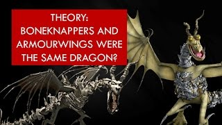 Download Youtube: THEORY: Boneknappers and Armourwings were the SAME dragon?