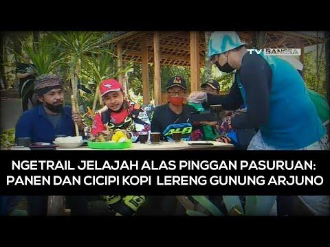 Ngetrail Jelajah Alas Pinggan Pasuruan, Panen dan Cicipi Kopi Lereng Gunung Arjuno